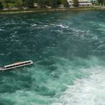 Rhyfall Mandli Bootsfahrten am Rheinfall von Schaffhausen