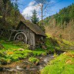 Mühle beim Vogtsbauernhof